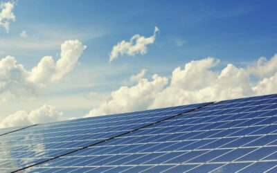 Harnessing sustainability to drive value from your IT investments